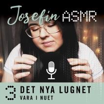 Cover for Vara i nuet