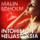 Cover for Intohimon heijastuksia – eroottinen novelli