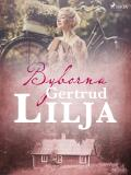 Cover for Byborna