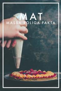 Cover for MAT Massa roliga fakta