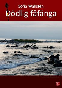 Cover for Dödlig fåfänga