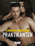 Cover for Praktikanten