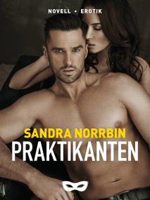 Cover for Praktikanten
