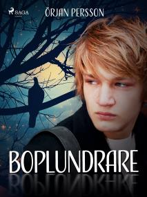 Cover for Boplundrare