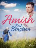 Cover for Amish