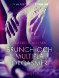 Cover for Brunch och multipla orgasmer - erotisk novell