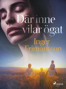 Cover for Där inne vilar ögat