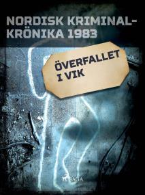 Cover for Överfallet i Vik