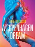 Cover for A Copenhagen Dream - erotic short story