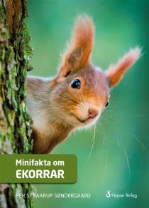Cover for Minifakta om ekorrar