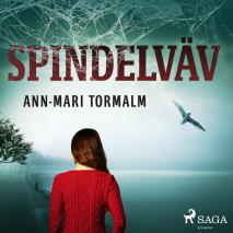 Cover for Spindelväv