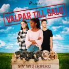 Cover for Valpar till salu