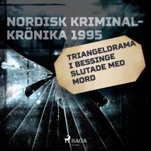 Cover for Triangeldrama i Bessinge slutade med mord