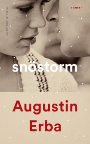 Cover for Snöstorm