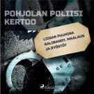 Cover for Liigan puuhina salibandy, maalaus ja ryöstöt