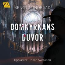 Cover for Domkyrkans duvor