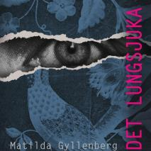 Cover for Det lungsjuka huset
