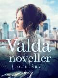 Cover for Valda noveller