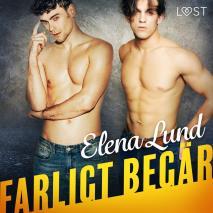 Cover for Farligt begär - erotisk novell