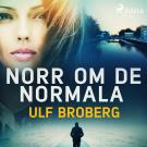 Cover for Norr om det normala