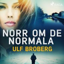 Cover for Norr om det normala