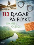 Cover for 113 dagar på flykt