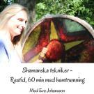 Cover for Shamanska tekniker del 8