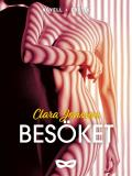 Cover for Besöket