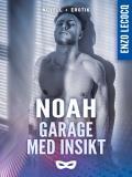 Cover for Garage med insikt