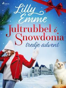 Cover for Jultrubbel i Snowdonia: tredje advent