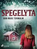 Cover for Spegelyta