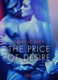 Cover for The Price of Desire - Erotic Short Story