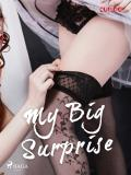 Cover for My Big Surprise