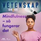 Cover for Mindfulness – så fungerar det