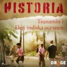 Cover for Tsunamin i Den indiska oceanen