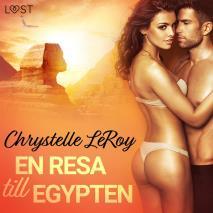 Cover for En resa till Egypten - erotisk novell