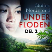 Cover for Under floden - del 2