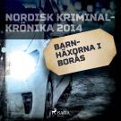 Cover for Barnhäxorna i Borås