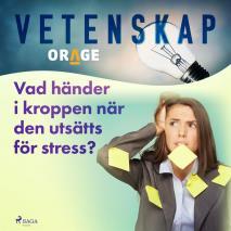 Cover for Vad händer i kroppen när den utsätts för stress?