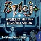 Cover for SPLEJ 10: Mysteriet med den hemsökta stugan