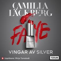 Cover for Vingar av silver