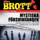 Cover for Mystiska försvinnanden