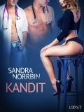 Cover for Kandit - eroottinen novelli
