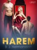 Cover for Harem - erotisk novell