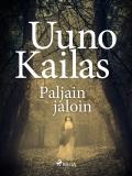 Cover for Paljain jaloin