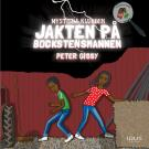 Cover for  Jakten på Bockstensmannen