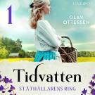 Cover for Ståthållarens ring: En släkthistoria