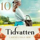 Cover for Lagens långa arm: En släkthistoria