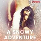 Cover for A Snowy Adventure
