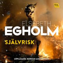 Cover for Självrisk